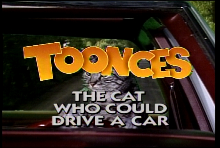 SNL_0595_05_Toonces_The_Cat_Who_Could_Drive_A_Car