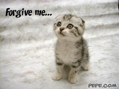 forgive_me_4