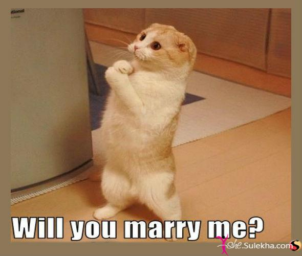 will-you-marry-me-2012-2-8-2-35-30
